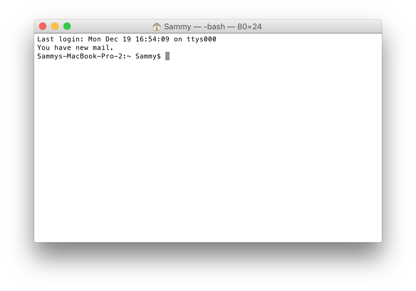Figure 3: Command Line Interface on a Mac. Screenshot of Apple's Terminal App, the way to interact with your Mac on a text basis.